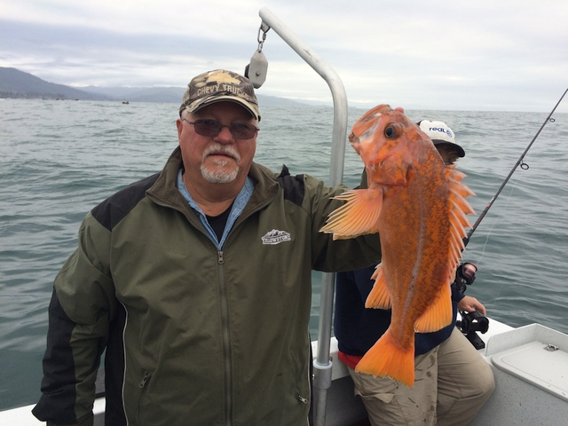 Lingcod and rockfish charters brookings fishing for Fishing brookings oregon