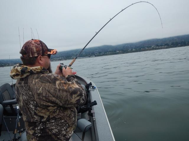 Oregon salmon and crab seasons autos post for Salmon fishing season oregon